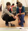 Клуб «Юный техник» получил наивысшее признание на фестивале роботехники в Санкт-Петербурге