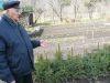 Хейно Ситс выращивает голубые ели и выводит зимостойкую облепиху