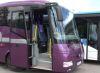 Новые автобусы выходят на маршруты