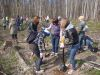 Руками учеников и учителей посажено 780 деревьев