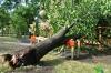 Ураган снес крышу и повалил деревья